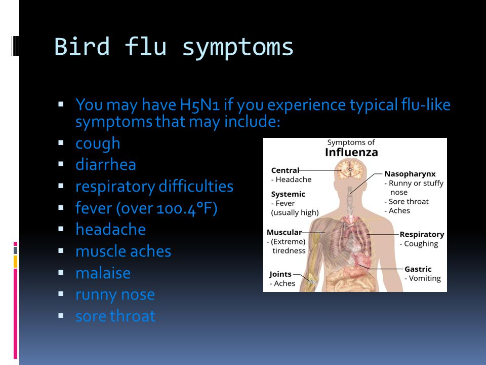  You may have H5N1 if you experience typical flu-like symptoms that may include:  cough  diarrhea  respiratory difficulties  fever (over 100.4°F)  headache  muscle aches  malaise  runny nose  sore throat Bird flu symptoms