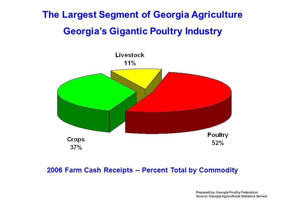 The Largest Segment of Georgia Agriculture 2006 Farm Cash Receipts -- Percent Total by Commodity Prepared by: Georgia Poultry Federation Source: Georgia Agricultural Statistics Service Georgia's Gigantic Poultry Industry