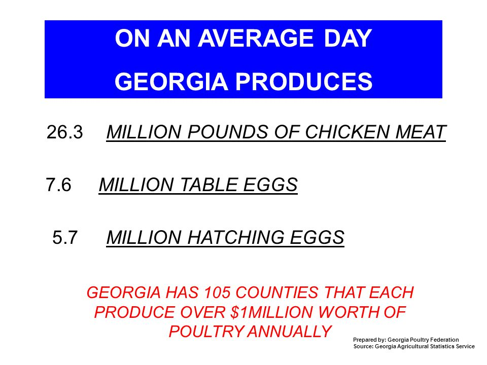 ON AN AVERAGE DAY GEORGIA PRODUCES 26.3 MILLION POUNDS OF CHICKEN MEAT 7.6 MILLION TABLE EGGS 5.7 MILLION HATCHING EGGS GEORGIA HAS 105 COUNTIES THAT EACH PRODUCE OVER $1MILLION WORTH OF POULTRY ANNUALLY Prepared by: Georgia Poultry Federation Source: Georgia Agricultural Statistics Service