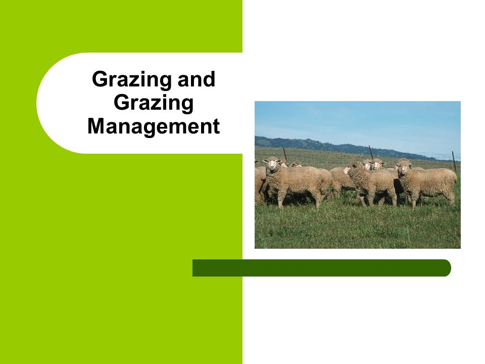 Grazing and Grazing Management