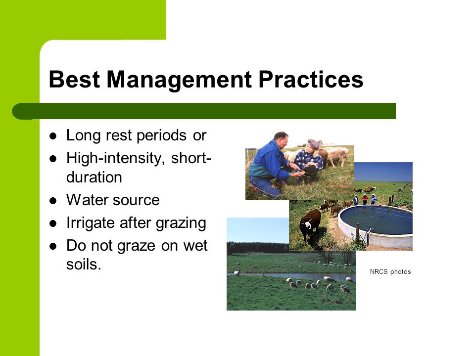 Best Management Practices Long rest periods or High-intensity, short- duration Water source Irrigate after grazing Do not graze on wet soils.