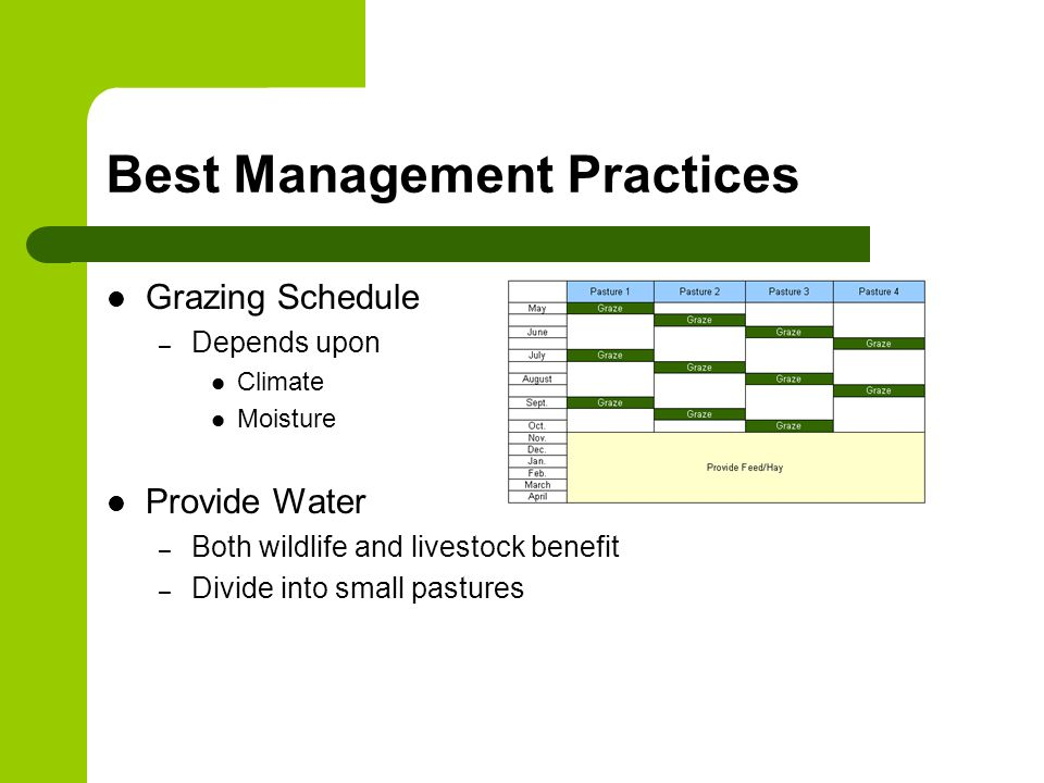 Best Management Practices Grazing Schedule – Depends upon Climate Moisture Provide Water – Both wildlife and livestock benefit – Divide into small pastures