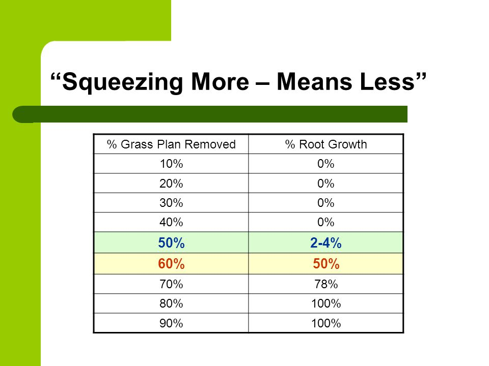 Squeezing More – Means Less % Grass Plan Removed% Root Growth 10%0% 20%0% 30%0% 40%0% 50%2-4% 60%50% 70%78% 80%100% 90%100%
