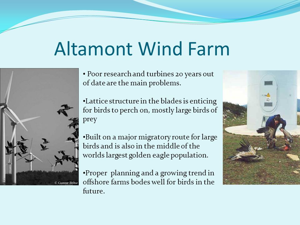 Altamont Wind Farm Poor research and turbines 20 years out of date are the main problems.