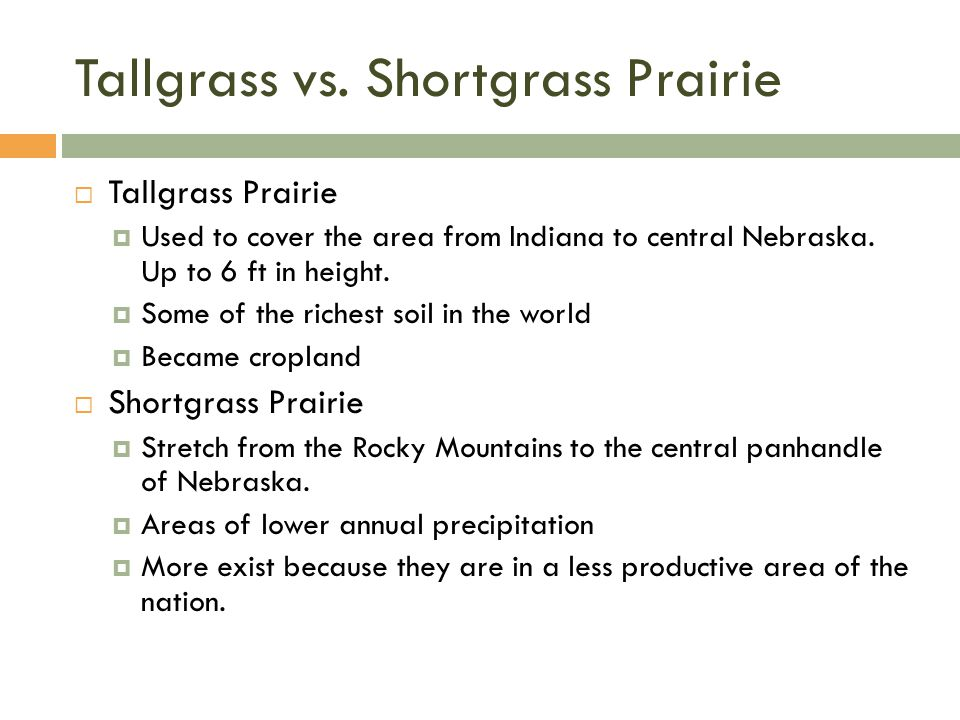 Tallgrass vs.