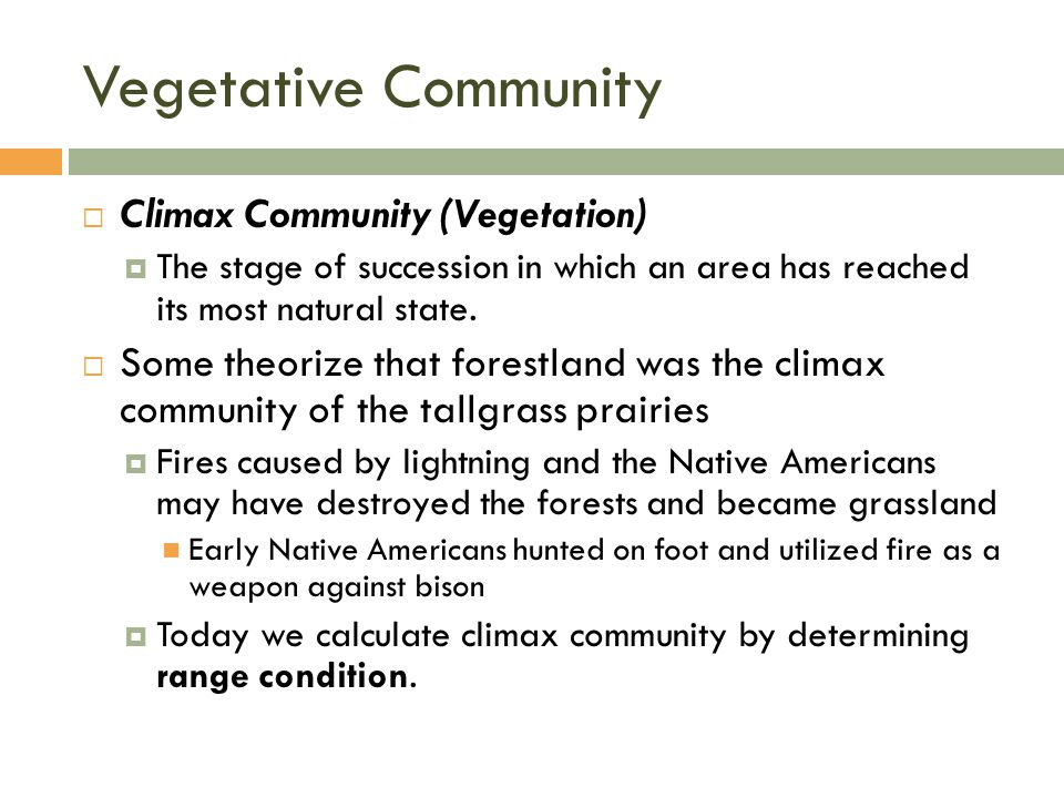 Vegetative Community  Climax Community (Vegetation)  The stage of succession in which an area has reached its most natural state.