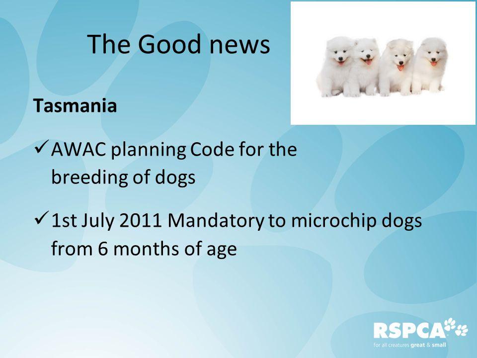 Puppy Farms Legislative progress Jade Norris, Scientific Officer