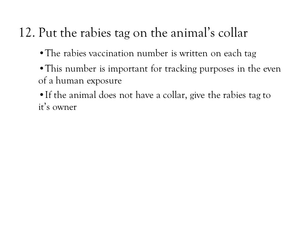 12.Put the rabies tag on the animal's collar The rabies vaccination number is written on each tag This number is important for tracking purposes in the even of a human exposure If the animal does not have a collar, give the rabies tag to it's owner