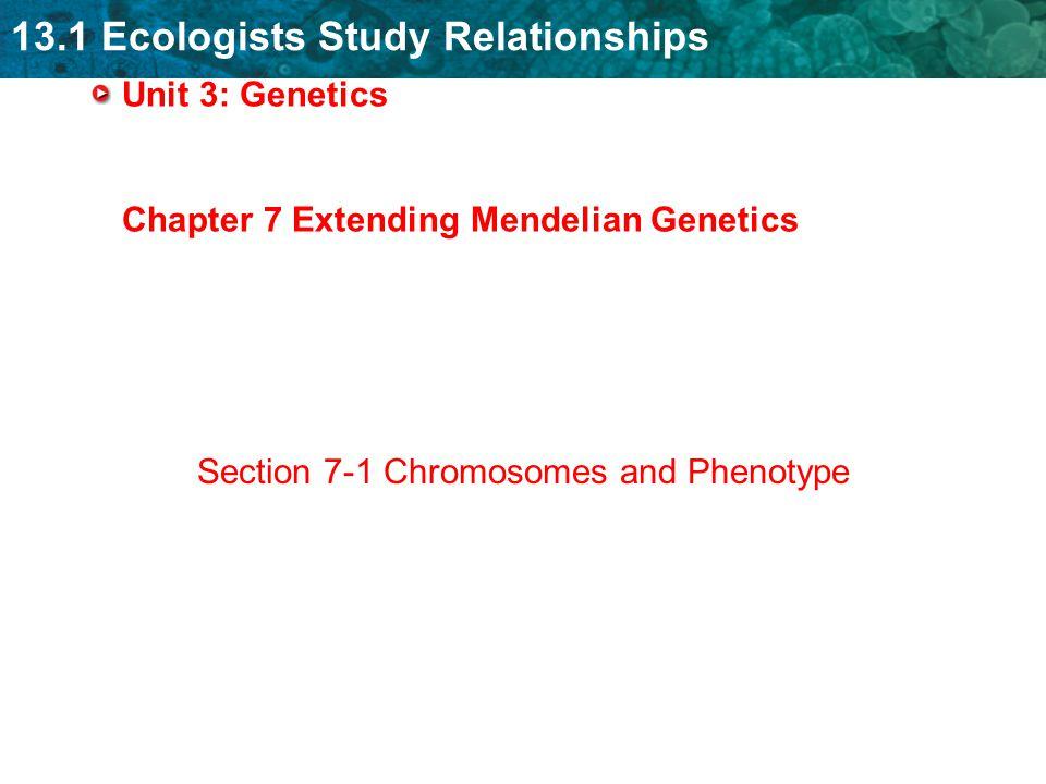 13 1 ecologists study relationships unit 3 genetics chapter 7 rh slideplayer com extending mendelian genetics study guide answers Section 14 1 Human Heredity Answer Key