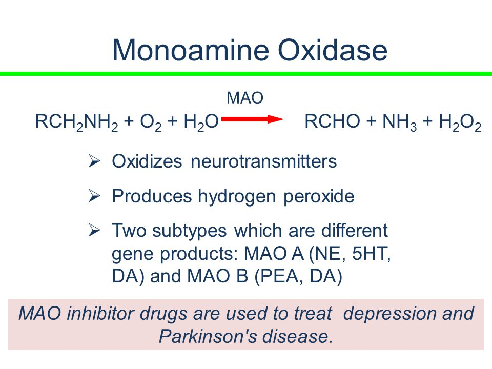 pet studies of enzyme activity monoamine oxidase and aromatase