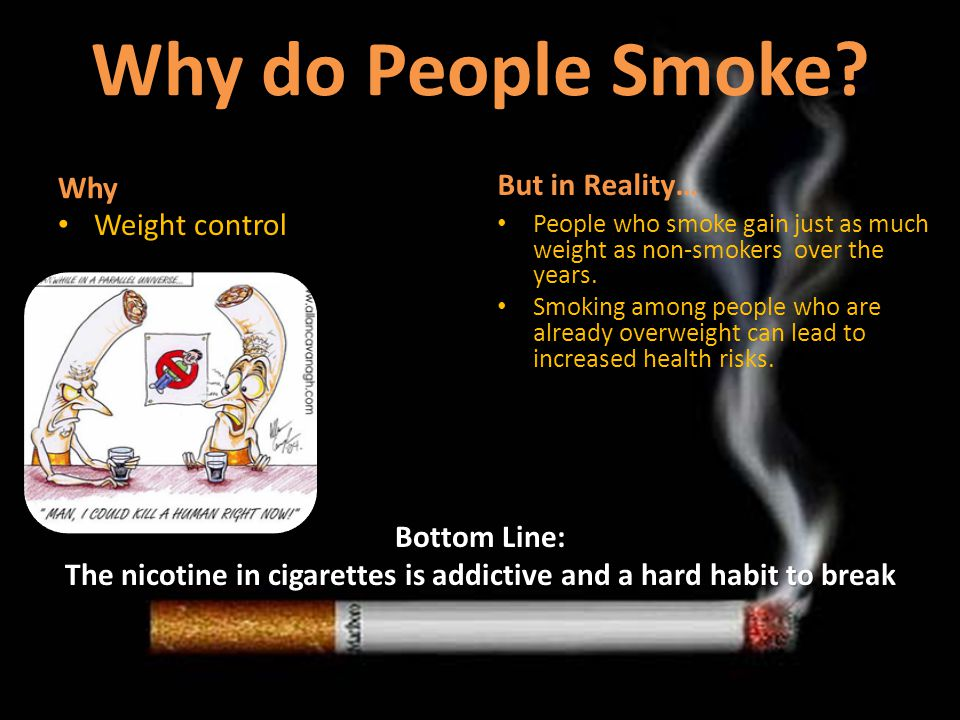 essay on why people shouldnt smoke Why do people smoke we will write a custom essay sample on and we ask ourselves why why do people risk there lives to 'fit in with the crowd' smoking remains the main cause of preventable disease and premature death in the uk.