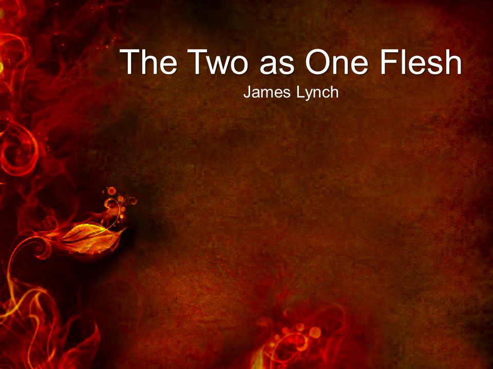 The Two as One Flesh James Lynch