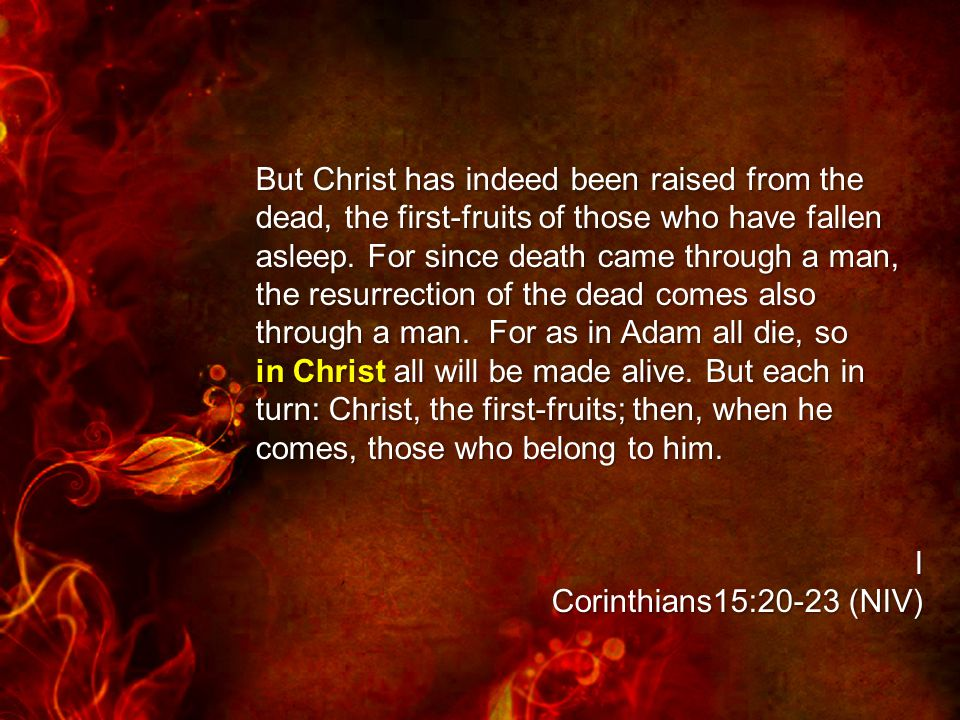 But Christ has indeed been raised from the dead, the first-fruits of those who have fallen asleep.