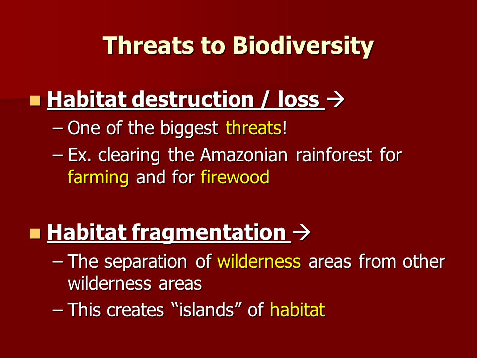 Threats to Biodiversity Habitat destruction / loss  Habitat destruction / loss  –One of the biggest threats.