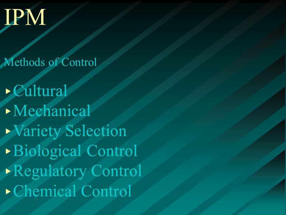 IPM Methods of Control ▸ Cultural ▸ Mechanical ▸ Variety Selection ▸ Biological Control ▸ Regulatory Control ▸ Chemical Control