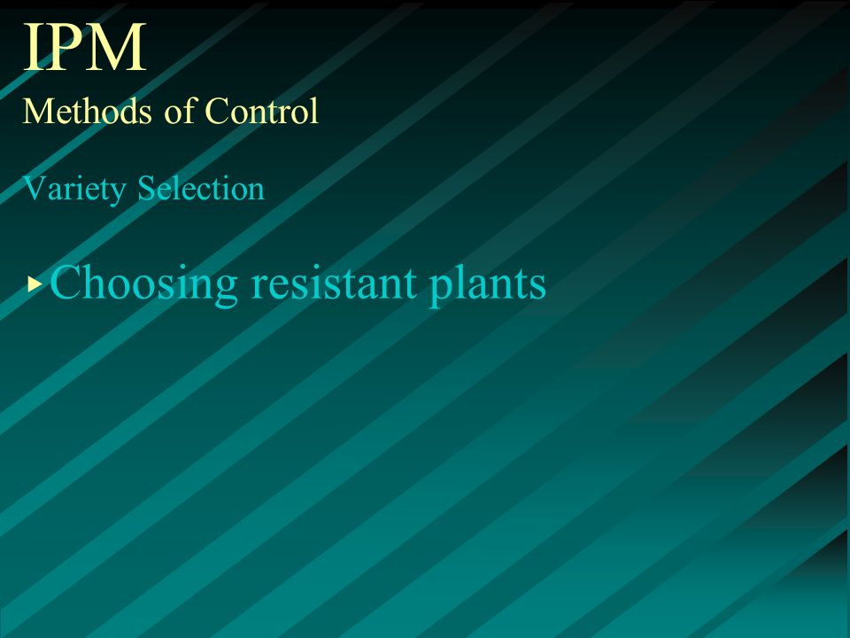 IPM Methods of Control Variety Selection ▸ Choosing resistant plants