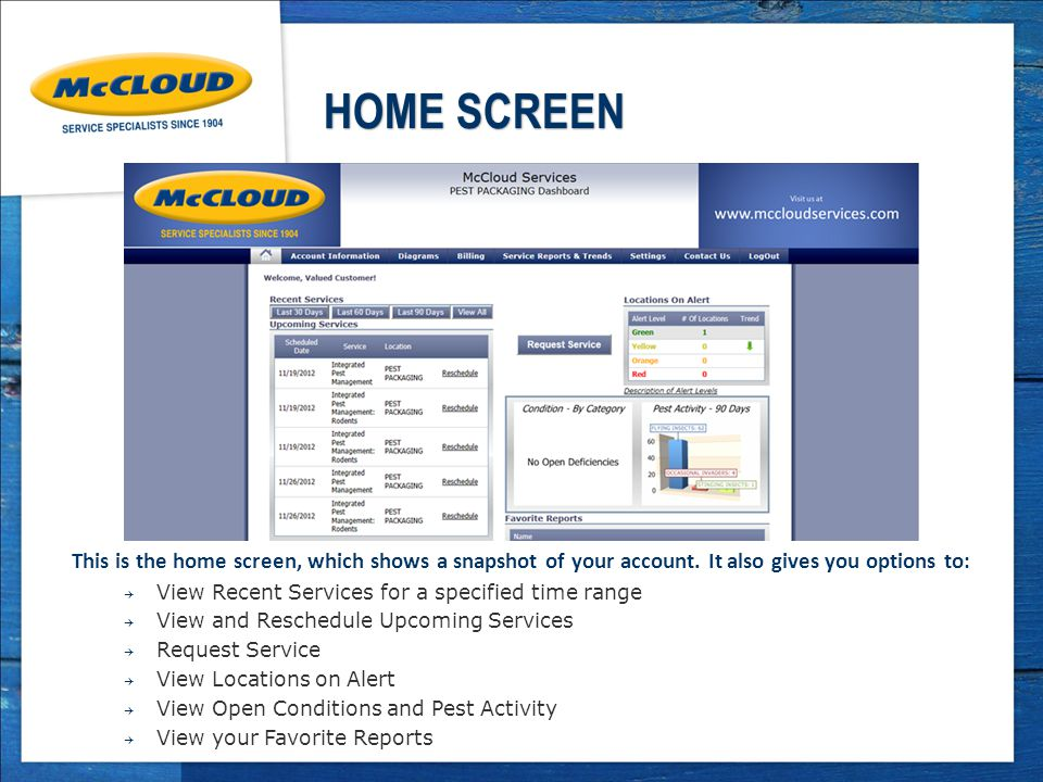 HOME SCREEN This is the home screen, which shows a snapshot of your account.
