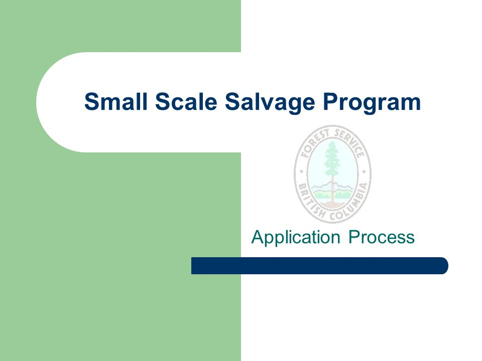 Small Scale Salvage Program Application Process
