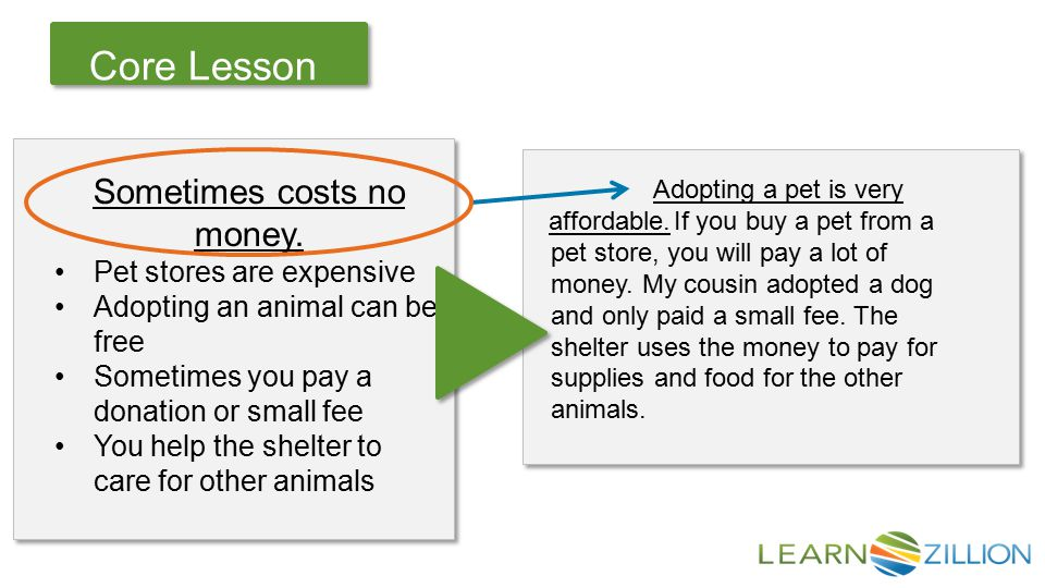 Let's Review Core Lesson If you buy a pet from a pet store, you will pay a lot of money.
