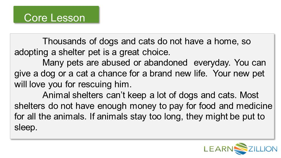 Let's Review Core Lesson Thousands of dogs and cats do not have a home, so adopting a shelter pet is a great choice.