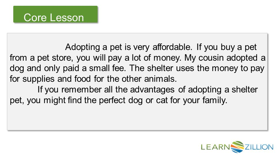 Let's Review Core Lesson Adopting a pet is very affordable.