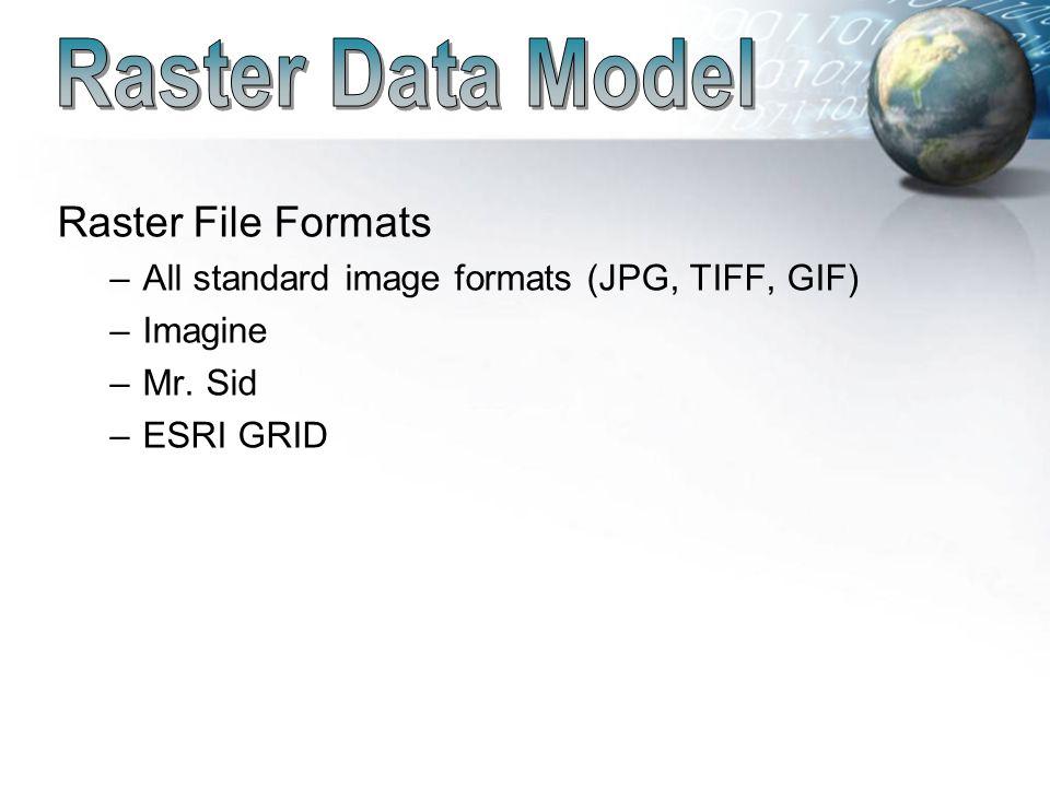 Data Models (Raster) Reading Assignment: Bolstad, Chapter ppt download