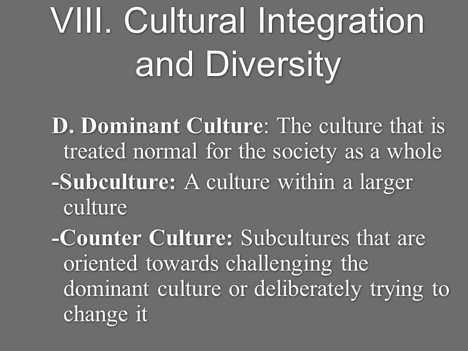 VIII. Cultural Integration and Diversity D.