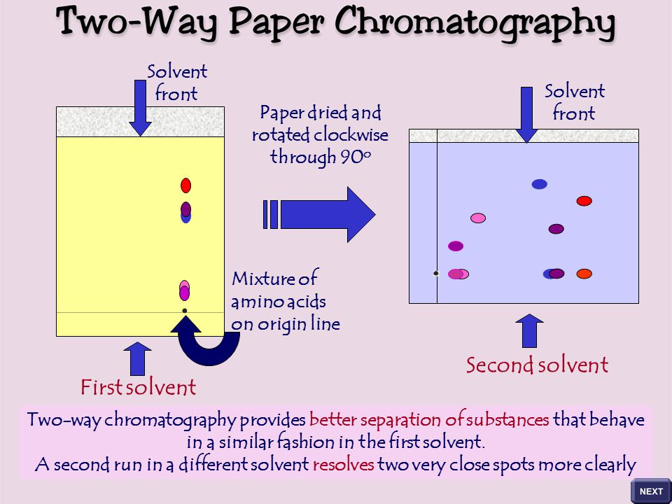 Chromatography Learning Objective To Be Able To Describe The Method