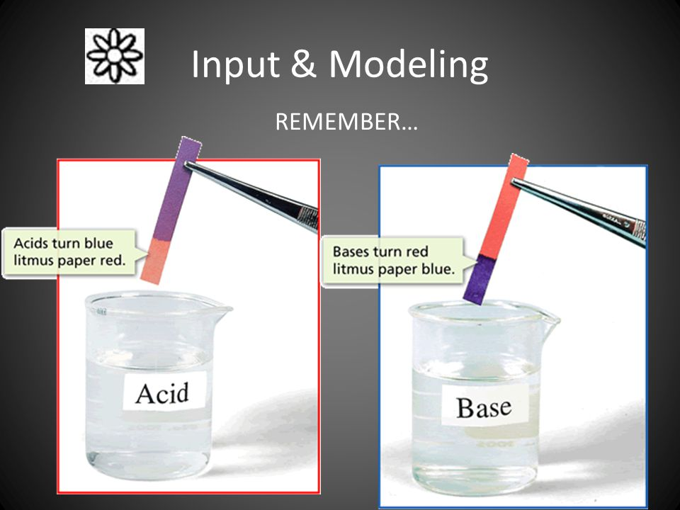 Input & Modeling REMEMBER…