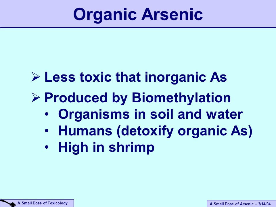 A Small Dose of Arsenic – 3/14/04 A Small Dose of Toxicology Organic Arsenic  Less toxic that inorganic As  Produced by Biomethylation Organisms in soil and water Humans (detoxify organic As) High in shrimp