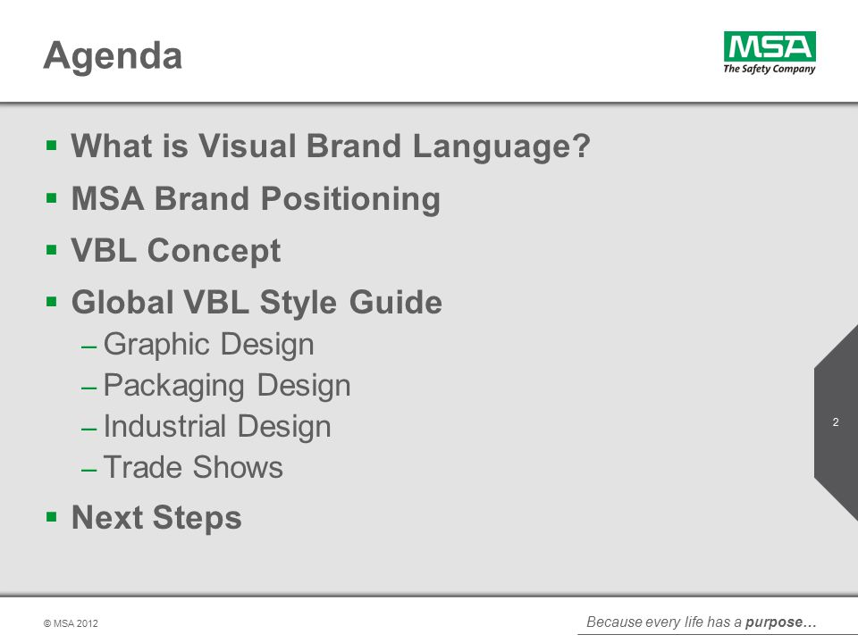 Because every life has a purpose… © MSA Agenda  What is Visual Brand Language.