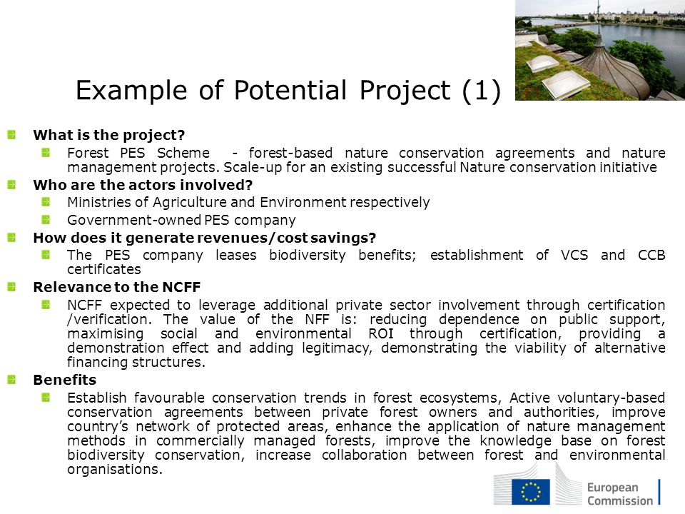 Example of Potential Project (1) What is the project.