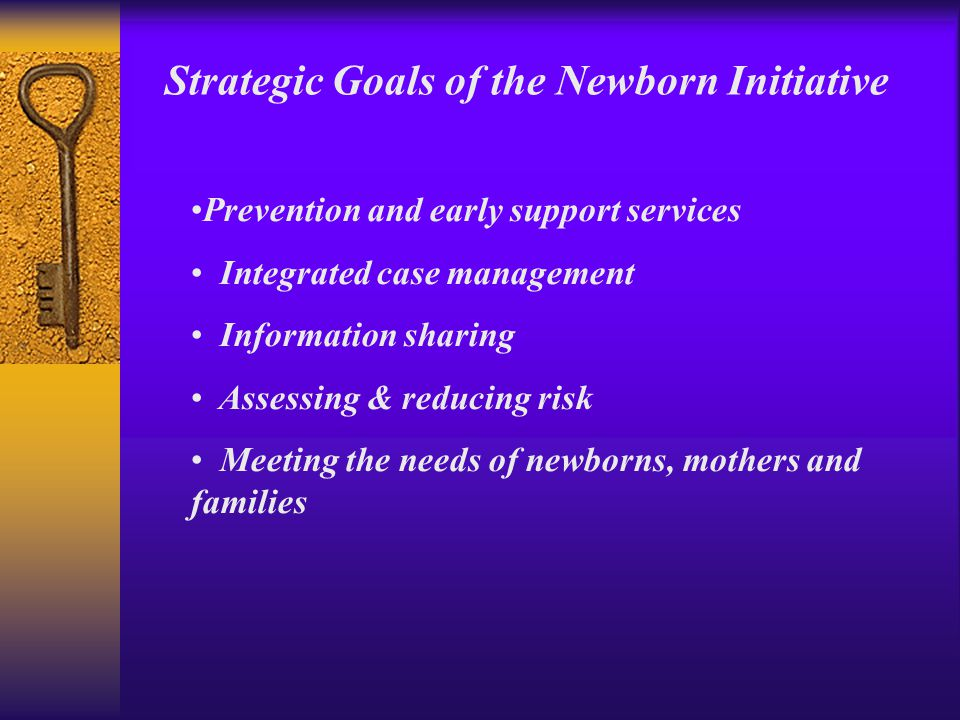 Prevention and early support services Integrated case management Information sharing Assessing & reducing risk Meeting the needs of newborns, mothers and families Strategic Goals of the Newborn Initiative