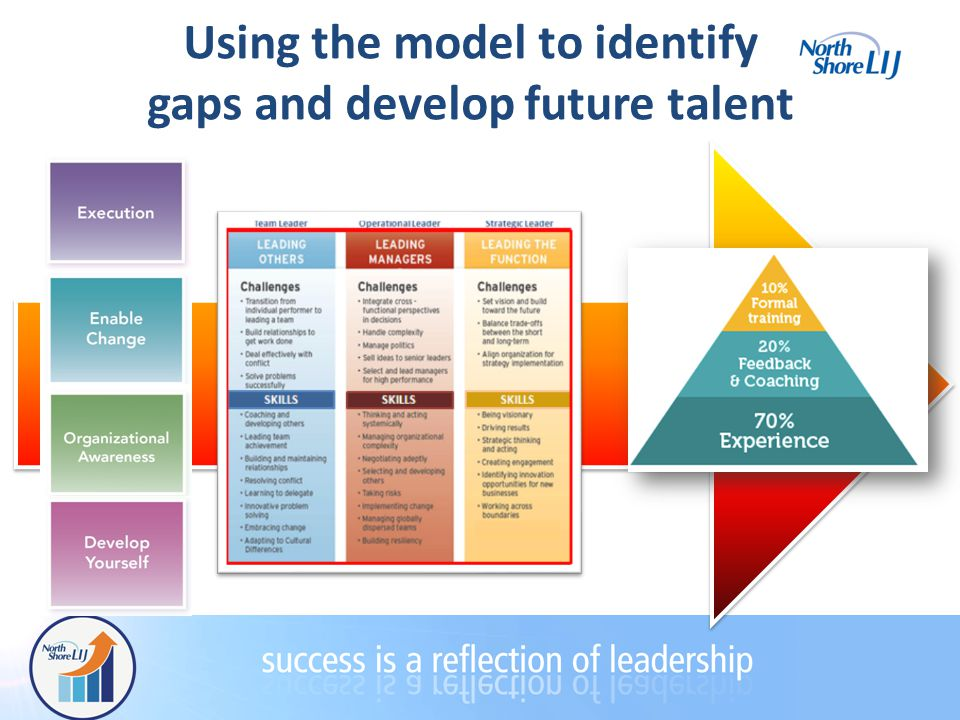 Using the model to identify gaps and develop future talent