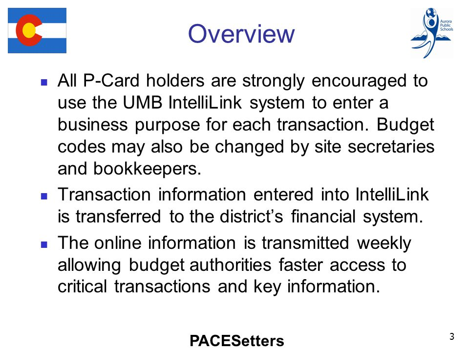 PACESetters Overview All P-Card holders are strongly encouraged to use the UMB IntelliLink system to enter a business purpose for each transaction.