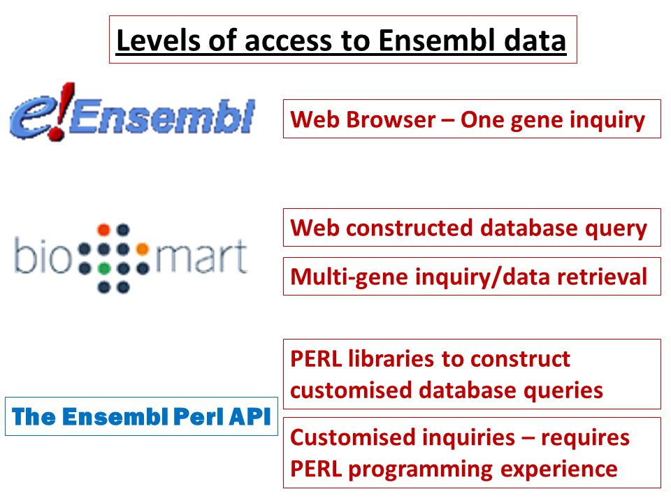 The Ensembl Perl API Levels of access to Ensembl data Web Browser – One gene inquiry Web constructed database query Customised inquiries – requires PERL programming experience Multi-gene inquiry/data retrieval PERL libraries to construct customised database queries