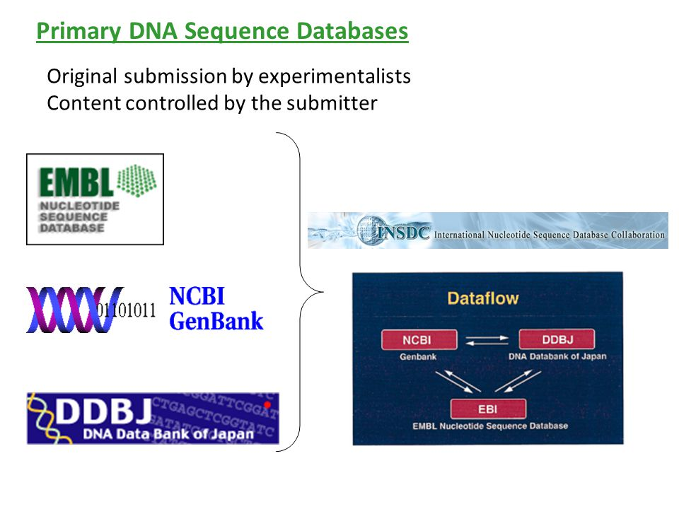 Primary DNA Sequence Databases Original submission by experimentalists Content controlled by the submitter