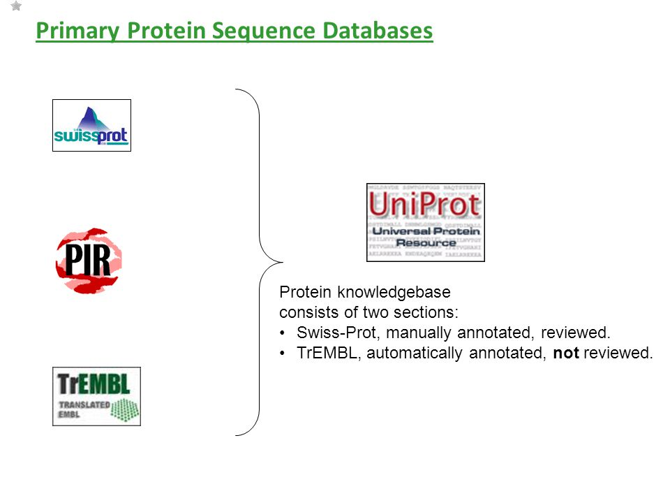 Primary Protein Sequence Databases Protein knowledgebase consists of two sections: Swiss-Prot, manually annotated, reviewed.