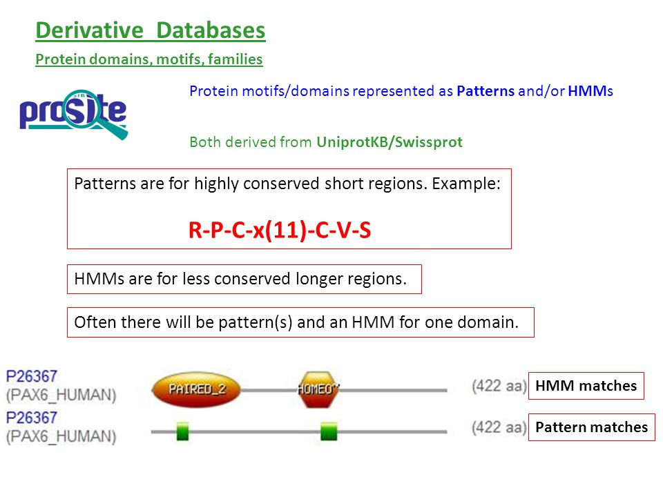 Protein motifs/domains represented as Patterns and/or HMMs Both derived from UniprotKB/Swissprot Protein domains, motifs, families Derivative Databases Patterns are for highly conserved short regions.