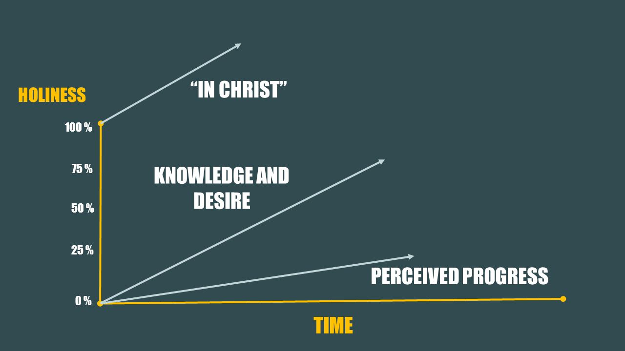 HOLINESS PERCEIVED PROGRESS 50 % 75 % 25 % 100 % 0 % IN CHRIST KNOWLEDGE AND DESIRE TIME
