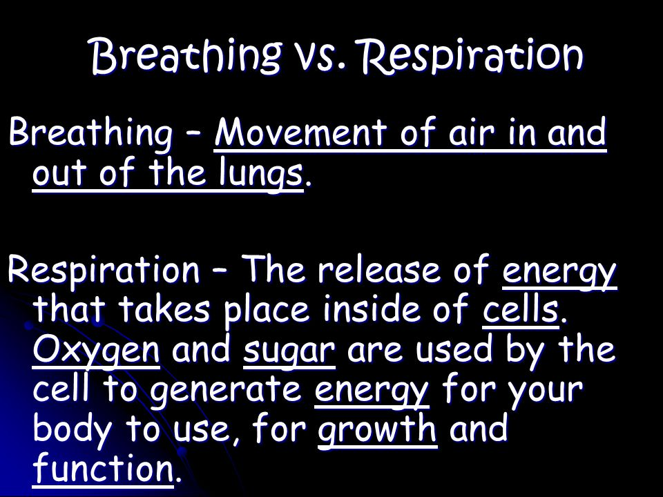 Breathing vs. Respiration Breathing – Movement of air in and out of the lungs.