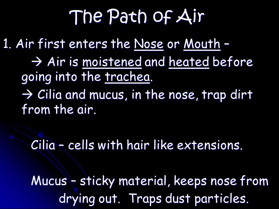 The Path of Air 1.