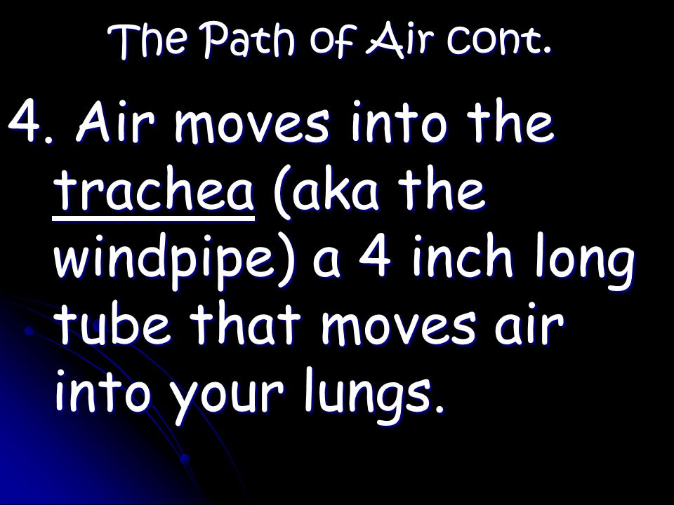 The Path of Air cont. 4.
