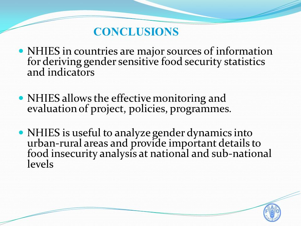 CONCLUSIONS NHIES in countries are major sources of information for deriving gender sensitive food security statistics and indicators NHIES allows the effective monitoring and evaluation of project, policies, programmes.