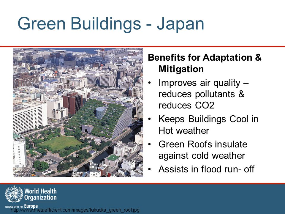 Green Buildings - Japan Benefits for Adaptation & Mitigation Improves air quality – reduces pollutants & reduces CO2 Keeps Buildings Cool in Hot weather Green Roofs insulate against cold weather Assists in flood run- off