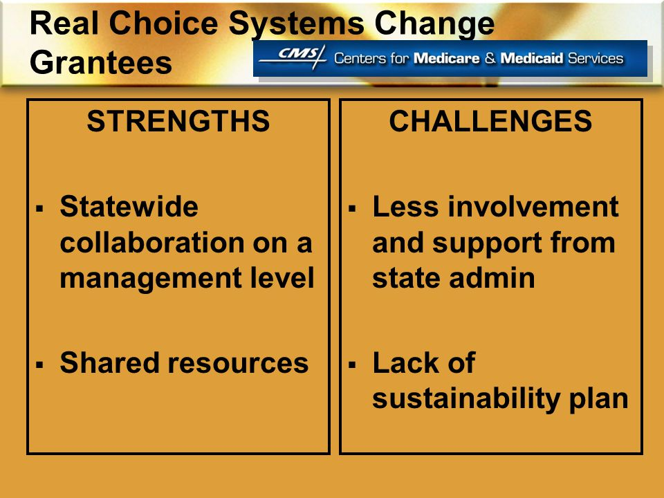 Real Choice Systems Change Grantees STRENGTHS  Statewide collaboration on a management level  Shared resources CHALLENGES  Less involvement and support from state admin  Lack of sustainability plan