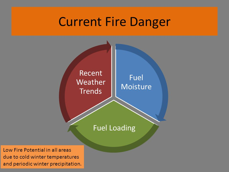 Current Fire Danger Fuel Moisture Fuel Loading Recent Weather Trends Low Fire Potential in all areas due to cold winter temperatures and periodic winter precipitation.