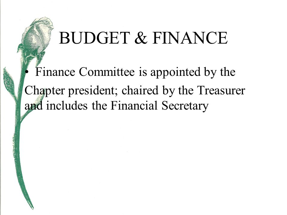 BUDGET & FINANCE Finance Committee is appointed by the Chapter president; chaired by the Treasurer and includes the Financial Secretary
