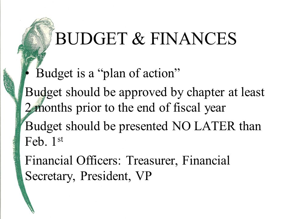 BUDGET & FINANCES Budget is a plan of action Budget should be approved by chapter at least 2 months prior to the end of fiscal year Budget should be presented NO LATER than Feb.