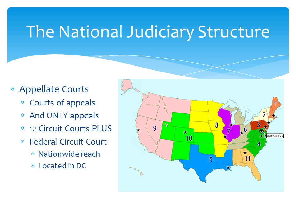  Appellate Courts  Courts of appeals  And ONLY appeals  12 Circuit Courts PLUS  Federal Circuit Court  Nationwide reach  Located in DC The National Judiciary Structure